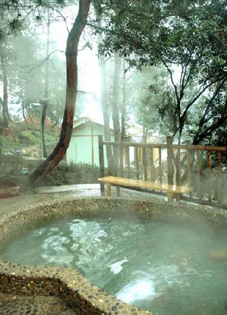 Tianyi Forest Spa Hotel