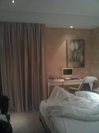 Dreamland Hotel : 比较大的房间