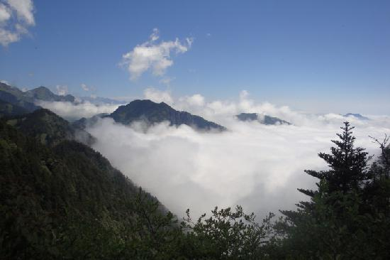 Sichuan, China: 西岭雪山风景区