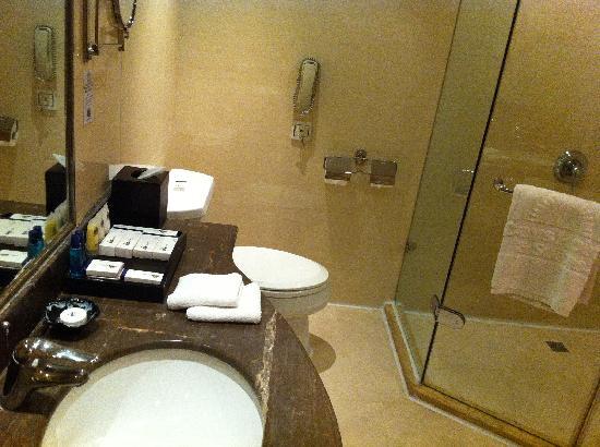 Days Hotel & Suites Jiaozuo : 厕所1