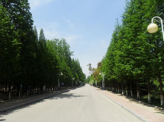 Linzhongyuan Hotel: SAM_0968