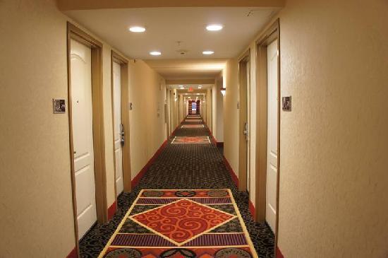 Hampton Inn & Suites Herndon-Reston: Hampton inn 5