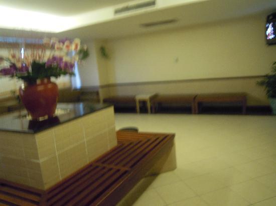 You An Hotel: 游泳馆