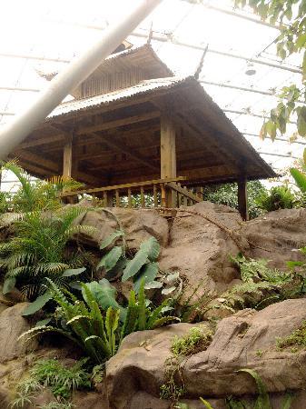 Zhongshan Botanical Garden