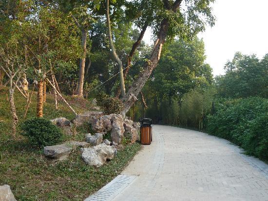 合肥环城公园