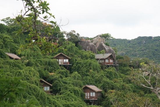 Sanya Tropical Paradise