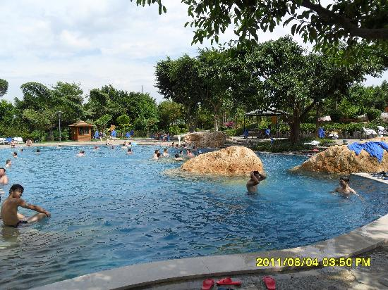 Mile Hot Spring Hotel: 34最大的游泳池