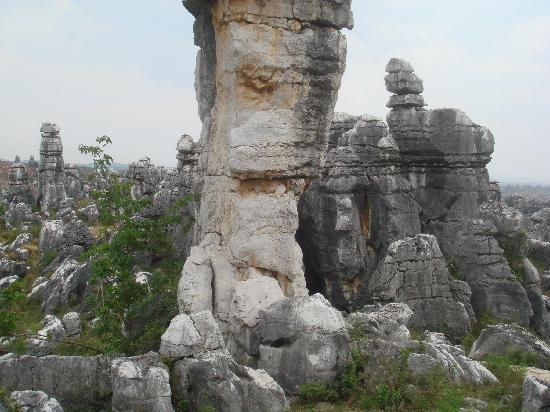 Liziqing Stone Forest