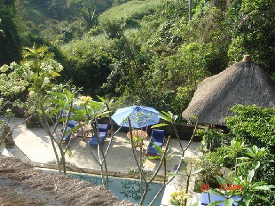 Alam Indah: 我们房间正下方的泳池