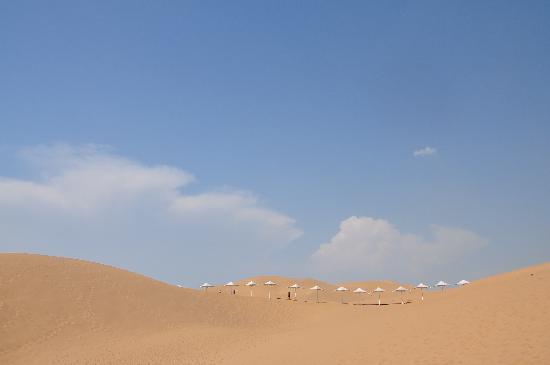 Whistling Dune Bay Tourist Scienc Spot: DSC_1109