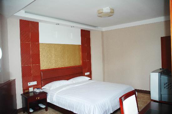 Jintan Yizhou Hotel : 豪华单人间