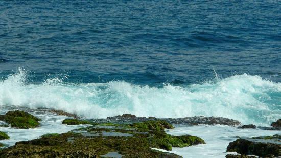 浪�_浪打礁石 - picture of pingtung, taiwan