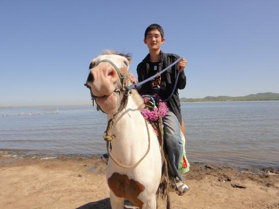 Bashang Prairie of Zhangbei: 张北小伙骑马时的英姿