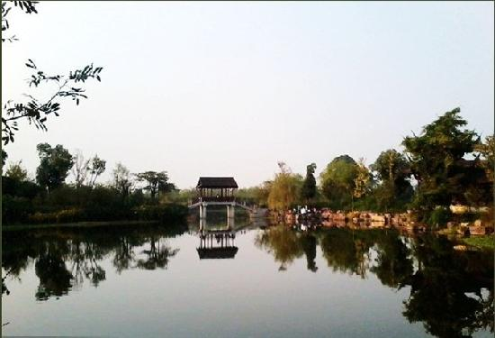 Hangzhou Forest Park : 16