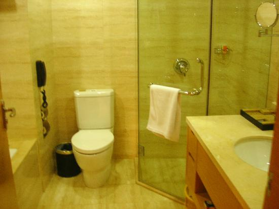 Sea View Hotel Hangzhou Bay: 洗手间有浴缸和淋浴房