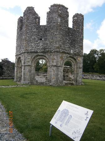 Mellifont Abbey 1