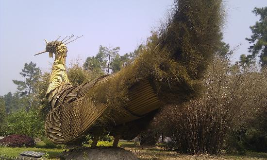 Anji Bamboo Museum Garden: IMAG0066