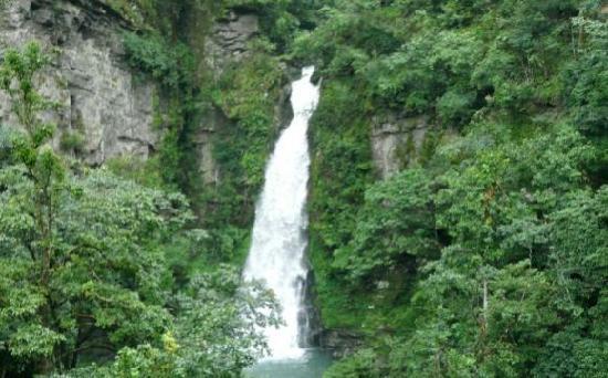 Jinggangshan Longtan Waterfall: 捕获