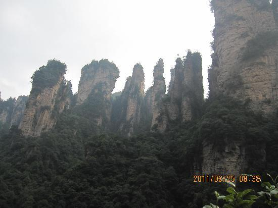 Tianzi Mountain : 将军列队