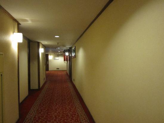 Xi'an Garden Hotel: 走廊
