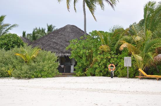 Maldive Victory: 悠闲的沙屋