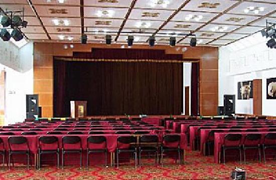 Xianyang Irico Hotel: 会议室