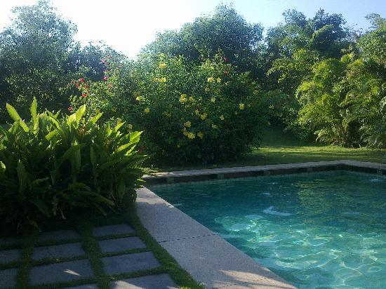 ย่าหลงเบย์ วิลล่าแอนด์สปา: 别墅内的景色