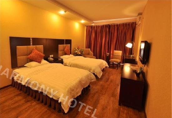 Haimeilun Hotel Leshan: 标准间