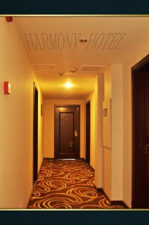 Haimeilun Hotel Leshan: 过道