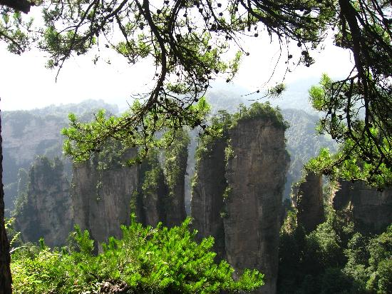 Zhangjiajie National Forest Park: img_0314