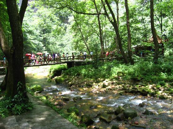 Wulingyuan Scenic and Historic Interest Area of Zhangjiajie: img_0347