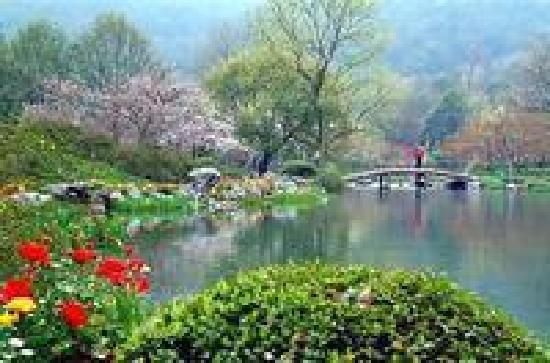 Prince Bay Park: 山水之地、绿树葱荫、鸟语花香