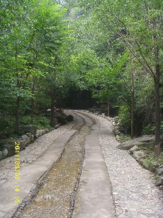 Shidu Nature Park: 那天人不多,喜欢这种幽静的感觉~