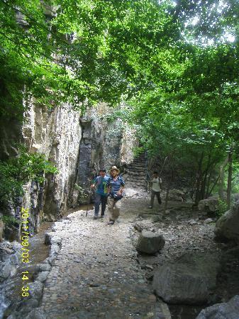 Shidu Nature Park: 喜欢这种清爽的绿色