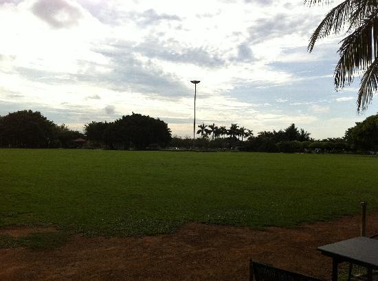 Wanlv Park: 草坪