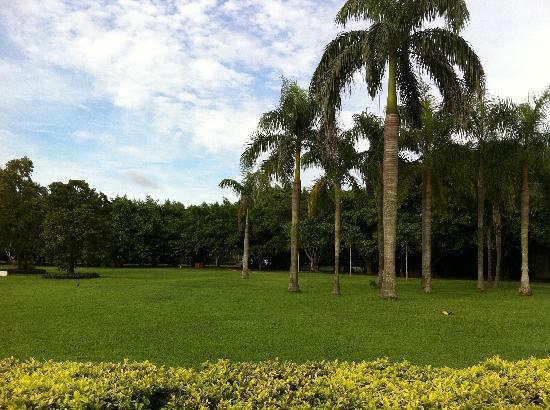 Wanlv Park: 043