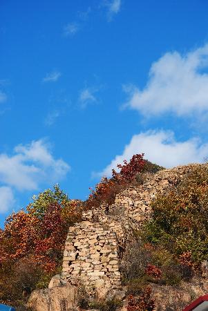Old Mountain: dsc_0047