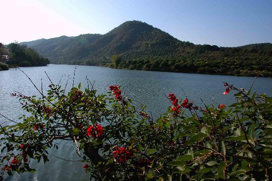 Liuxi River Forest Park : 1101050235e584a9e341467e4d