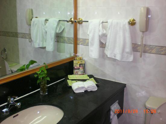 Hangzhou Zhijiang Hotel: 洗手间摆放着一盆植物(那叫什么?)