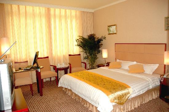 Guangyuan Jianmenguan Hotel : 商务单间