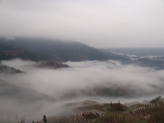 Dragon's Backbone Rice Terraces: 好美