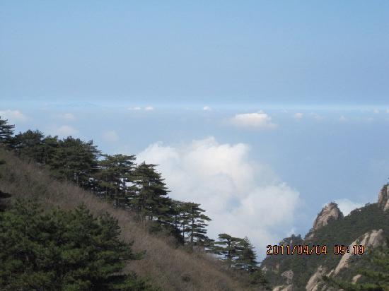 Mt. Huangshan (Yellow Mountain): psuca2eqape