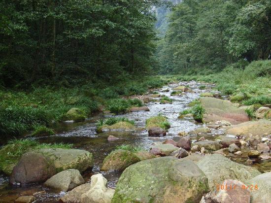 Zhangjiajie National Forest Park: RIMG0029
