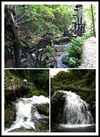 Deqing Panlong Valley: IMG_0375