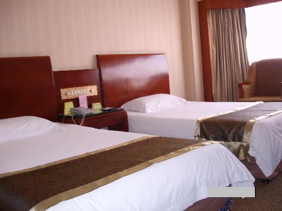 Jiangdu Grand Hotel: 豪华标准间 3