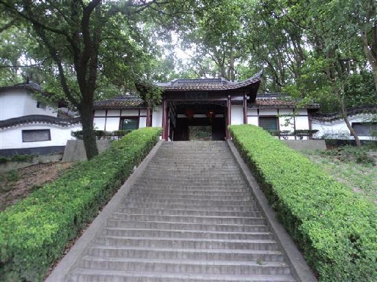 Songjiang Tianma Mountain: T1