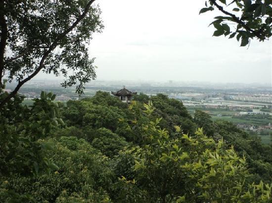 Songjiang Tianma Mountain: 塔