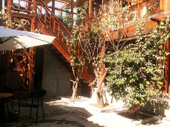 Dongqinyuan Inn : 阳光灿烂的小院