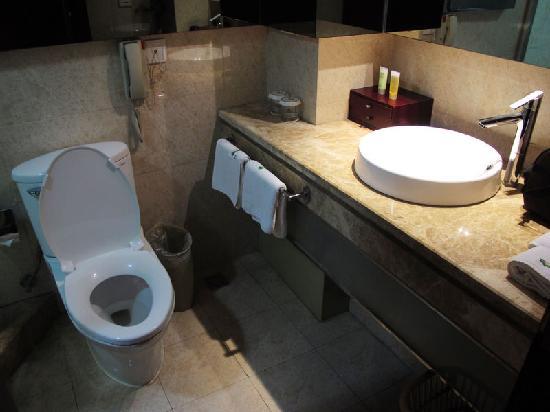 Sunda Gentleman International Hotel: 卫生间的坐便器与洗漱台