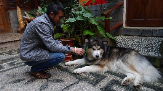 Menghui Lijiang Inn: P1050365